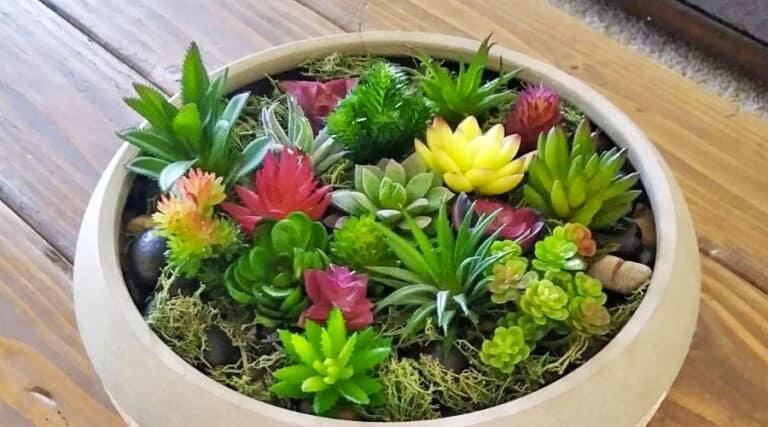 Piante finte da interno - Scegliere le migliori piante ...
